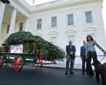 Celebrity News: Christmas at the White House  Celebrity News: Christmas at the White House Celebrity News Christmas at the White House 371x300