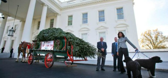 Celebrity News: Christmas at the White House  Celebrity News: Christmas at the White House Celebrity News Christmas at the White House 640x300