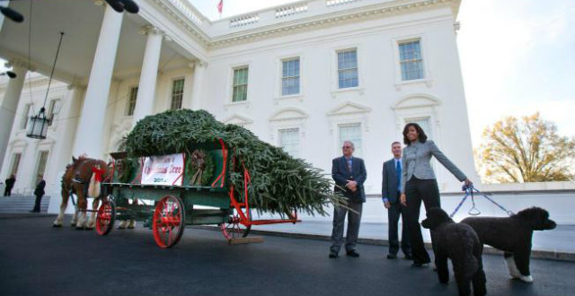 Celebrity News: Christmas at the White House Celebrity News Christmas at the White House