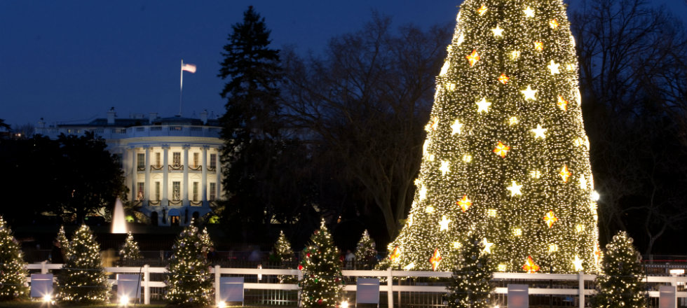 Most Amazing Celebrity Christmas Trees  Most Amazing Celebrity Christmas Trees White House and the National Christmas Tree in Washington D