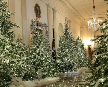 Discover White House Christmas 2017 Decorations White House Christmas 2017 Discover White House Christmas 2017 Decorations Discover White House Christmas 2017 Decorations 371x300