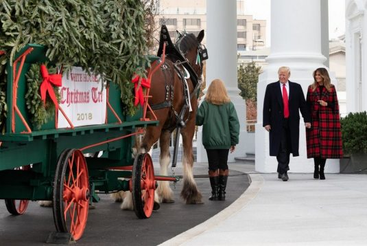 Melania Trump Unveils 2018 Christmas Decoration at the White House