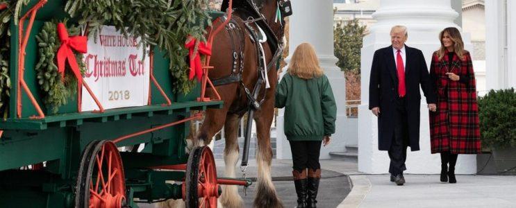 Melania Trump Unveils 2018 Christmas Decoration at the White House  Melania Trump Unveils 2018 Christmas Decoration at the White House Melania Trump Unveils 2018 Christmas Decoration at the White House 2 743x300